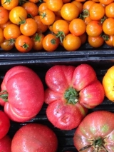 <h5>Delicious Tomatoes</h5><p>Summer yields from True Leaf's seasonal Tomato House, their signature Sungold and Heirloom variety tomatoes.</p>