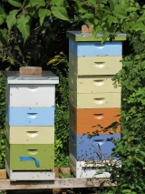<h5>Eric&#039;s Bees</h5><p>Lundale Honey comes from Langstroth style hives, invented in the 1860 and now used by 75% of the world's beekeepers. Eric&#039;s collection is quite colorful tucked in the landscape at Lundale.</p>